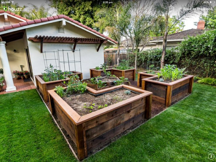 A great idea for a veggie patch bandicoot free for Garden design vegetable patch