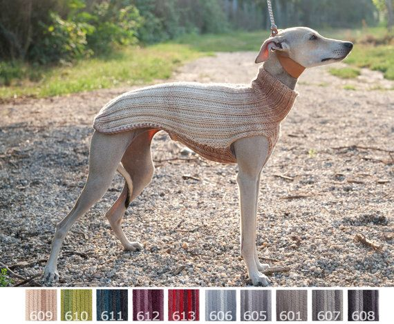 Gradient Italian Greyhound Sweater / Jumper / Merino ...