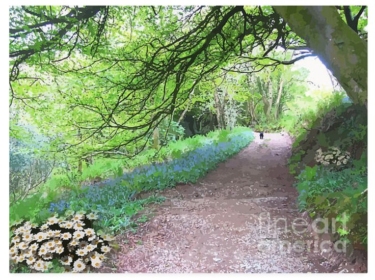 The wee doggie looks quite content trotting off along this beautiful track. Someone has thoughtfully planted flowers along the way and thrown some bluebell bulbs into the grass. What a refreshing walk this would be. A chance to breathe fresh air and empty out some thoughts.