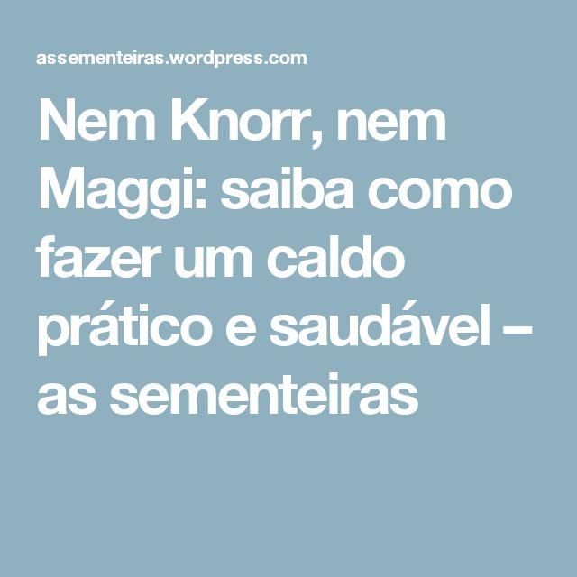 Nem Knorr, nem Maggi: saiba como fazer um caldo prático e saudável – as sementeiras