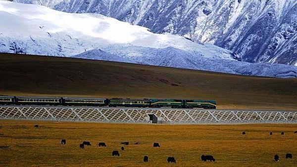 Los viajes y rutas en tren más bonitos del mundo – BuenaVibra