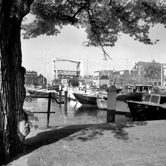 Dordrecht<br />Dordrecht: Voorjaar aan de haven met een mooi zicht op de Spoorbrug