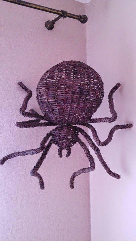 Araña   -   spider