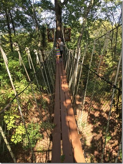 Visit the SkyHy Treehouse at Red Mountain Park - it has an amazing and unique view of downtown Birmingham!