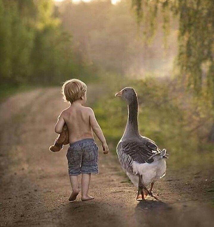 Gli amici veri, comprendono anche i tuoi silenzi.