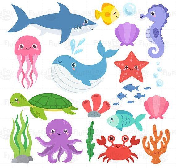 Ocean Animal Clipart Sea Animals Clip Art Marine Life Etsy In 2021 Animal Clipart Ocean Animals Sea Animals