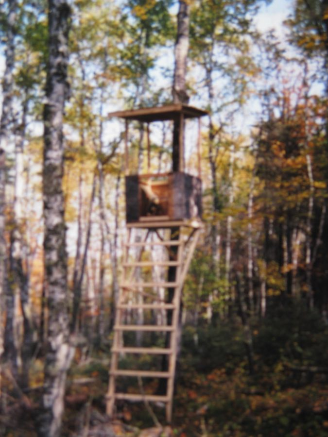 Deer stand plans deer hunting etc pinterest deer for Diy deer stand plans