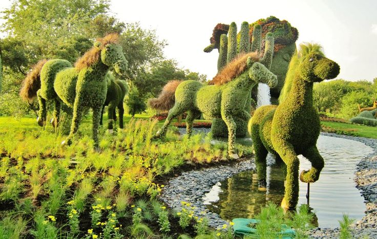 Horses topiary