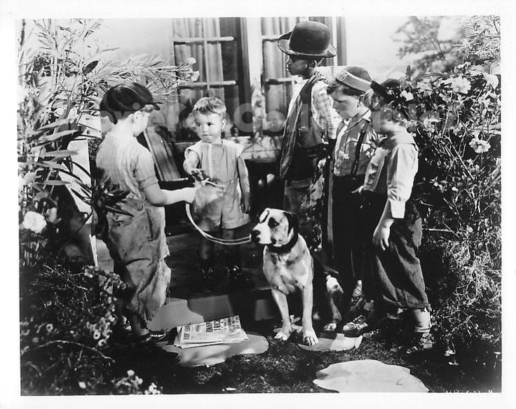 """Movie Still / Publicity Photo / Press Kit Promo Title: The Little Rascals Star(s): George McFarland (Spanky) Genuine Black and White glossy photograph Approximate size: 8"""" x 10"""" (205mm x 255mm) Condit"""