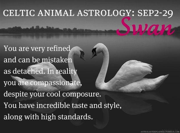 Celtic Animal Astrology: Swan (September 2 - September 29)