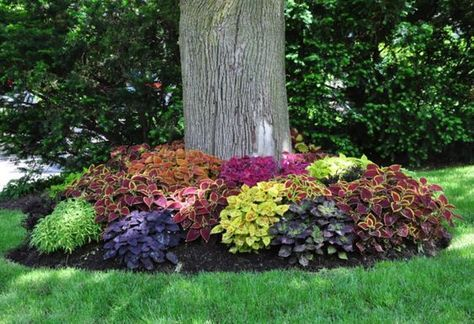 15 Most Beautiful Front Yard Flower Beds Ideas For Shady 400 x 300