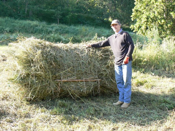 Baling hay without a baler balle ronde manuelle barillons botte de foin manuelle cheval de - Une botte de foin ...