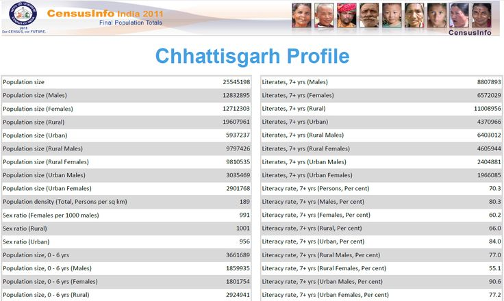 Chhattisgarh Population Distribution.