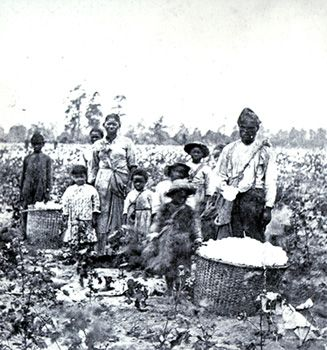 slave life on a plantation essay