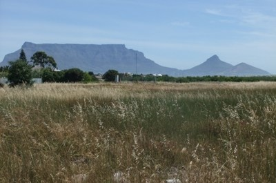 901m² Prime land on the vlei. Uninterrupted views of Table Mountain and Table Bay (from double storey building). Water services have already been provided to the land. Rare find close to public transport