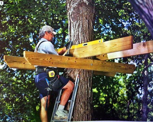 Construire une cabane dans les arbres. Le guide, les méthodes - les cabanes -