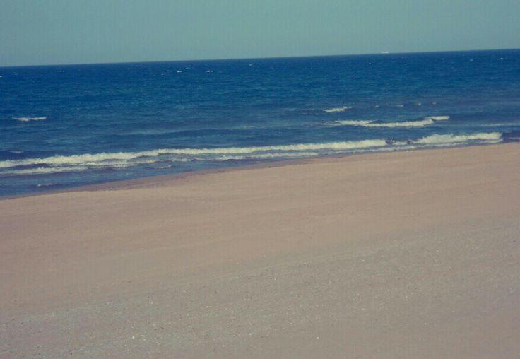 Oliva playa