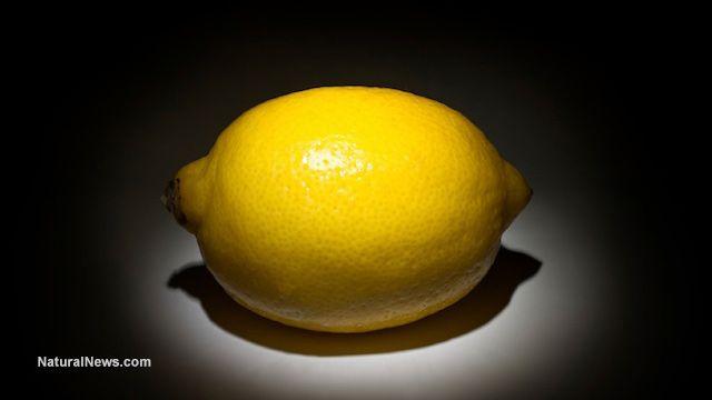 Study proves lemon eucalyptus essential oil is better mosquito repellent than DEET: