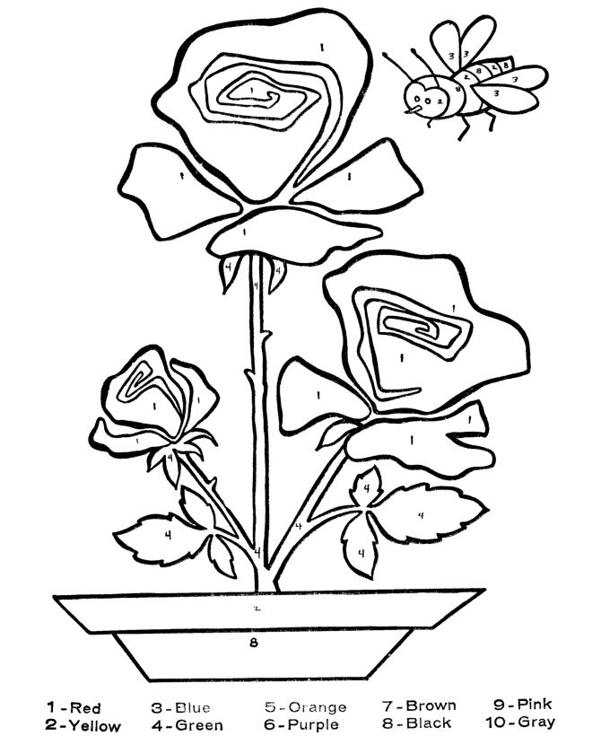 217 best images about coloring by number on pinterest for Printable coloring pages for alzheimer s patients