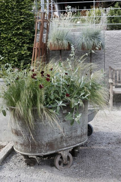 Container gardening - fantastic container at Zetas nursery, Sweden