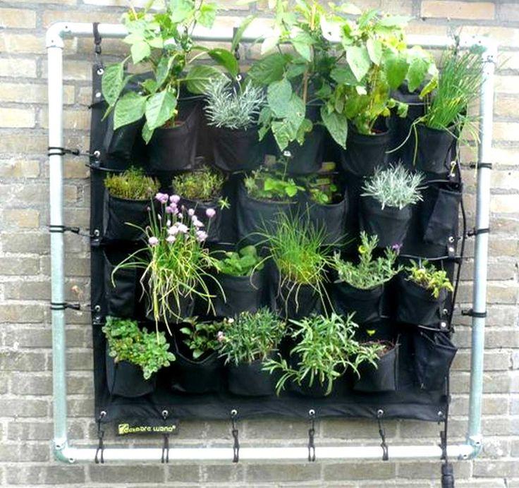 Droom je al tijden van een kruidentuin of bloemenzee, maar is er op je kleine balkon gewoon geen ruimte voor? De Eetbare Wand is een verticale tuin die de oplossing biedt!