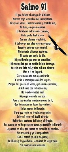 Salmo 91                                                                                                                                                      Más