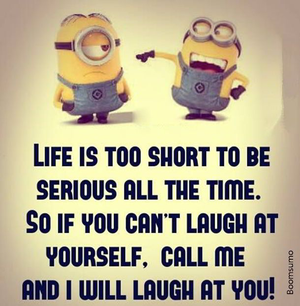 Funny Quotes And Sayings About Life: Best 25+ Cute Short Quotes Ideas On Pinterest