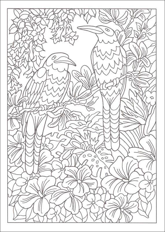 paradise designs coloring book creative haven  mandala