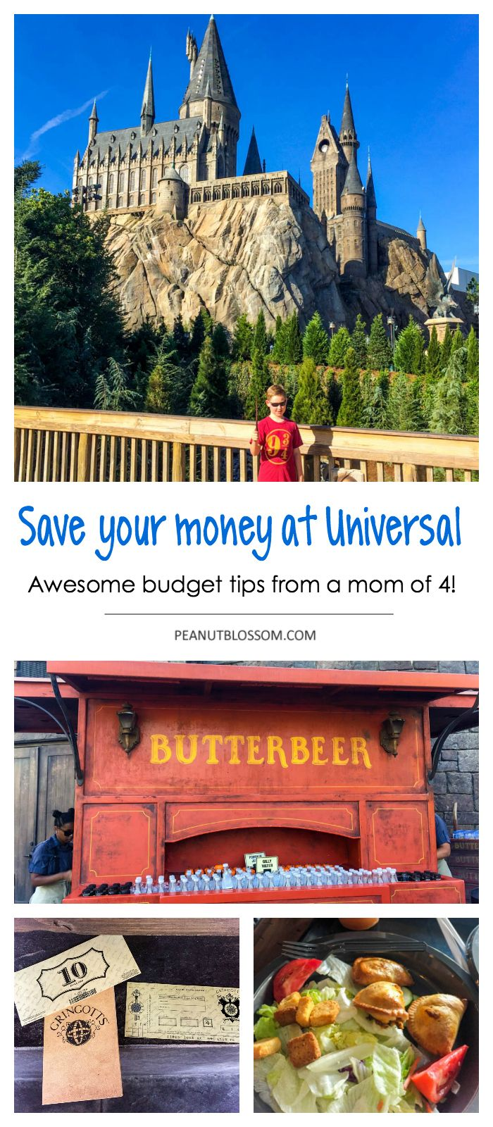 Save your money like a pro: Tips for visiting Harry Potter at Universal on a budget. 14 money saving tips from a frugal mom of 4 kids. Perfect for planning a trip to Universal Resort Orlando to see The Wizarding World of Harry Potter.