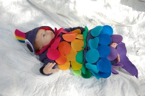1000 images about rainbow fish on pinterest tissue for Baby fish costume