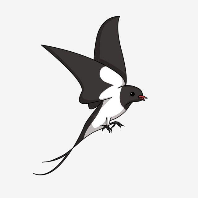 Beautiful Swallow Flying Swallow Black Swallow Beautiful Swallow Cartoon Illustration Hand Drawn Swallow Illustration Beautiful Swallow Png Transparent Clipa Cartoon Illustration Witch Silhouette Illustration