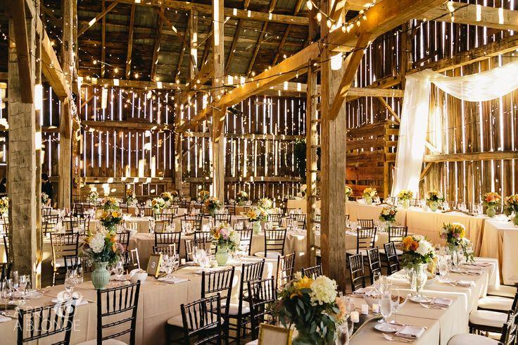 A stunning wedding at Cambium Farms shot by A Brit & A Blonde! #barnwedding #ontariobarnwedding #caledon #rusticvenue #elegance #toronto  www.cambiumfarms.com www.abritandablonde.com