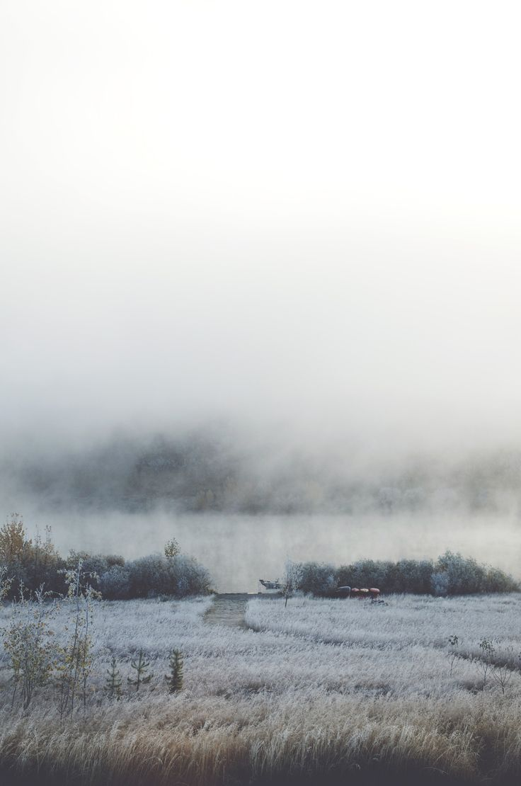s-l-e-e-p-deprivation:    thephotographyqueen:    woke up to a frosty yard and a foggy lake    My dream.