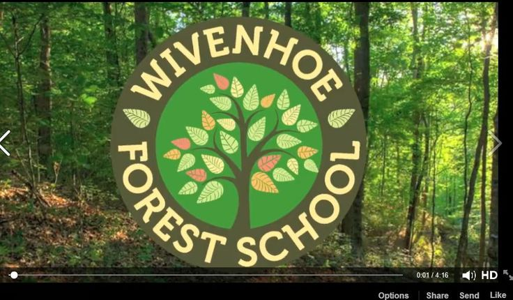 #7 Thanks to Katie Duffy for a wonderful video showing Wivenhoe Forest School children interacting with nature! Video on fb only.