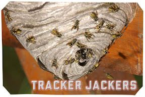 Make a tracker jacker pinata. Maybe fill with gold glitter so that flecks of gold burst out every time you hit it