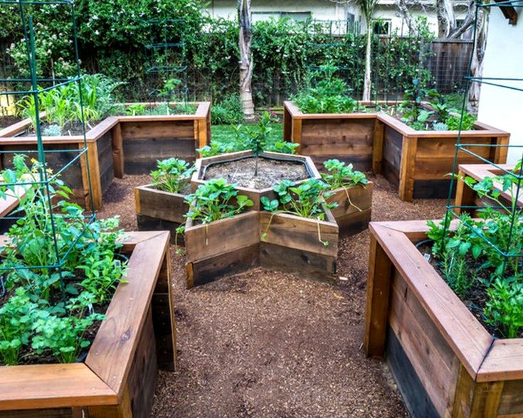 Cheap Raised Garden Bed Designs Excellent Cheap Raised Garden Beds Adelaide For Garden Ideas