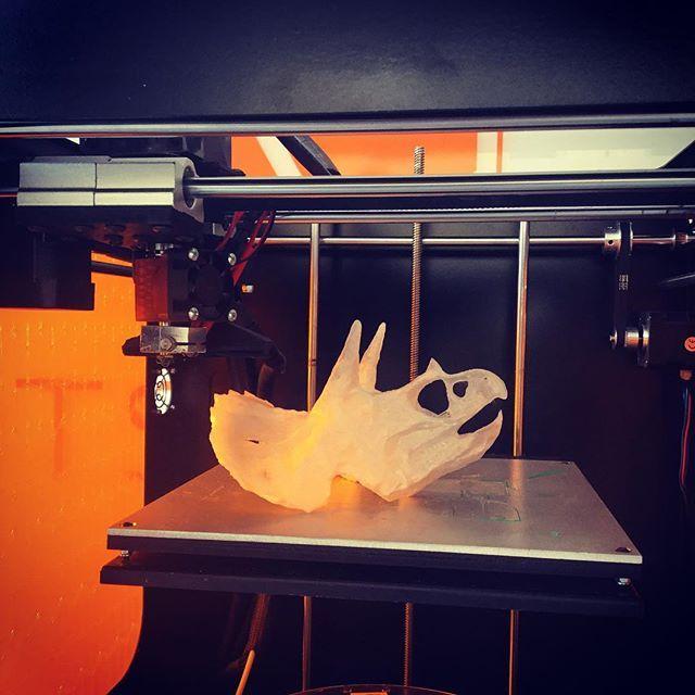 Una testa di triceratopo stampata 3D  A 3D printed triceratop head #3dprinters #stampanti3d #3dprinting #stampa3d #triceratops #ksverve