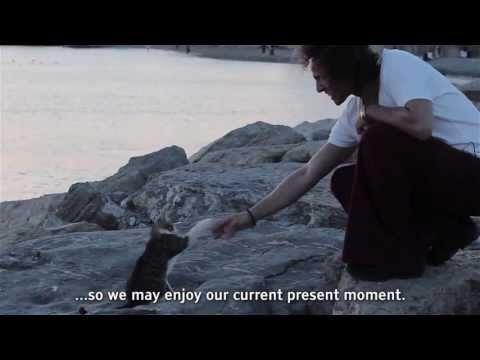 An'ı Büyütmek | Mert Güler – Expanding the Present Moment | Mert Güler TV