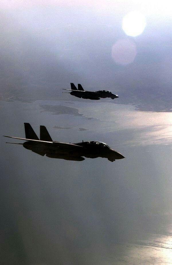Navy F14