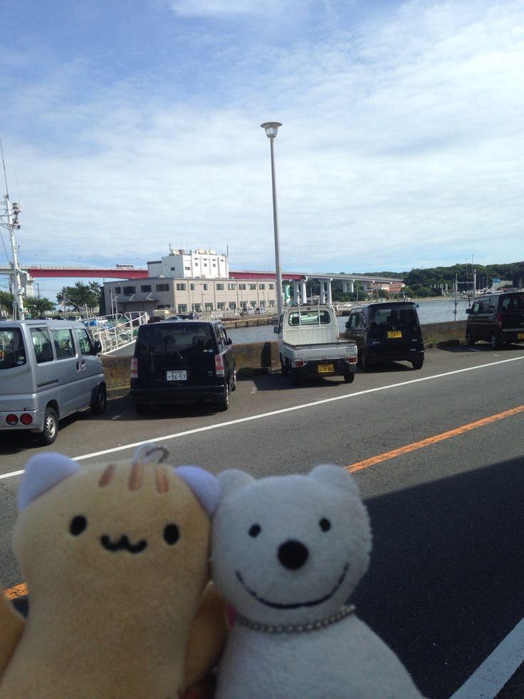 クマ散歩:三崎港で品行方正なクマはまた、魚を買う The Bear got Seafood at the Fish Store in Misaki Port again!♪☆(^O^)/  #Port#Misaki#Fish