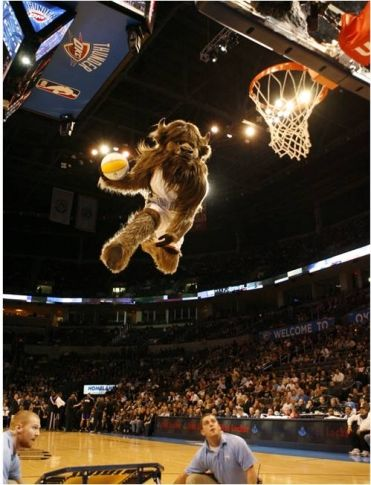 Check out high flying stunts from the #OKCThunder's mascot Rumble the Bison while watching a #Thunder game at the Chesapeake Energy Arena in #Oklahoma City!
