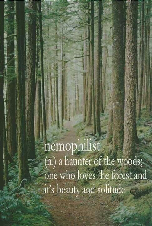 Nemophilist - (n.) A haunter of the woods; one who loves the forest and it's beauty and solitude #WordPorn