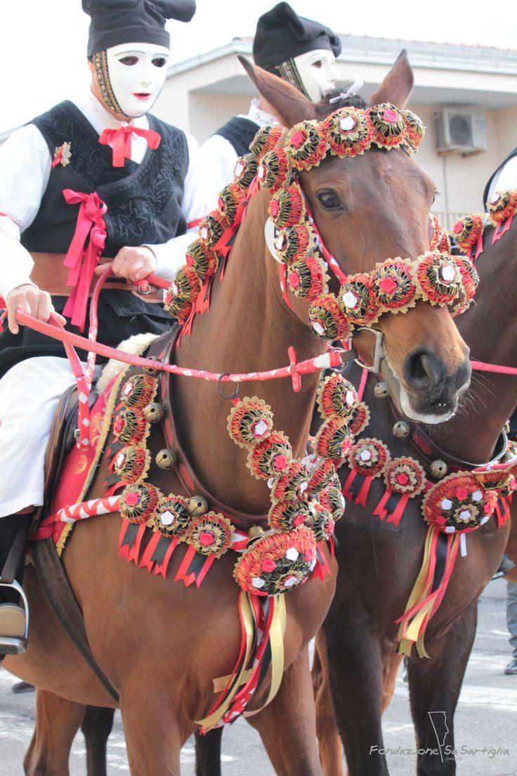 #Sartiglia #colori #bardature #cavalli