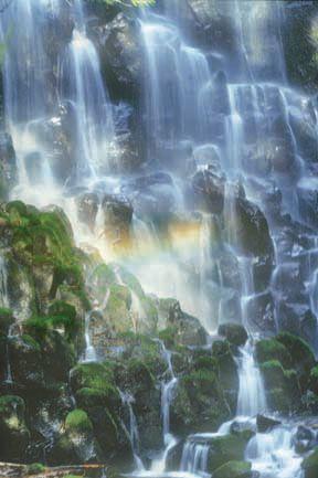 Oregon Hikes - Ramona Falls. A day trip from Portland!