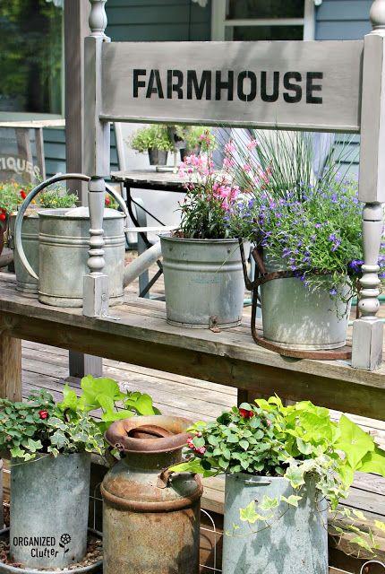 25251 hometalk gardening