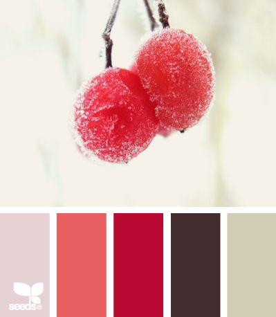 Winter Berry Color Palette Pinterest Berries Winter