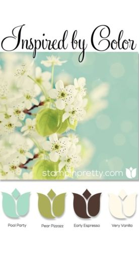 Inspired By Color & Oh So Succulent Stamp Set | Stampin' Pretty