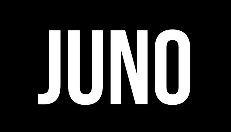 Juno, the Interactive Development Environment