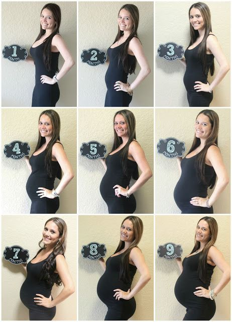 Best 25 Pregnancy Monthly Photos Ideas On Pinterest