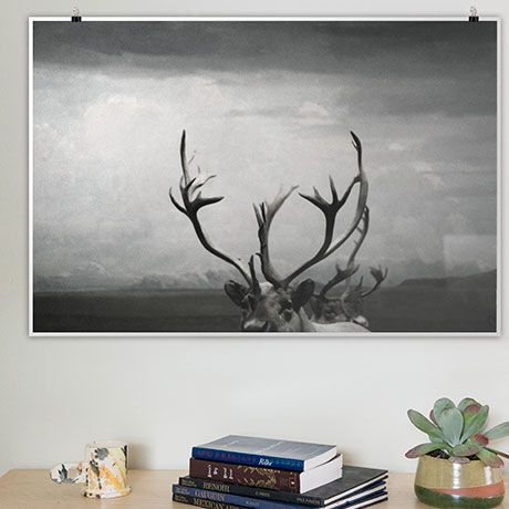 Antlers Poster - alt_image_three